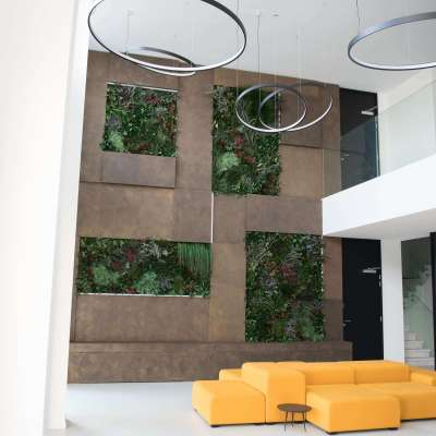 Wild plants wall for Navona